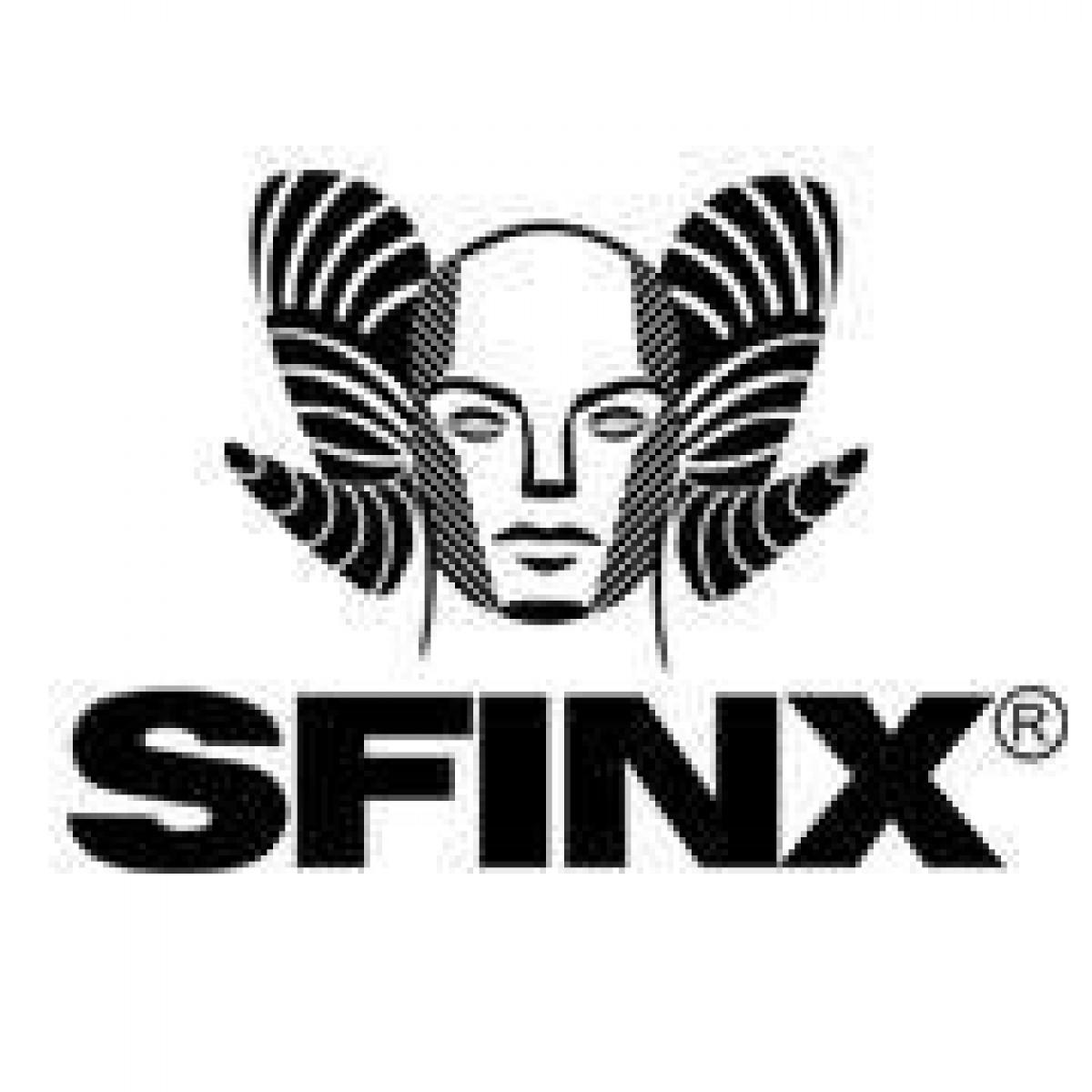 Sfinx šokių grupė