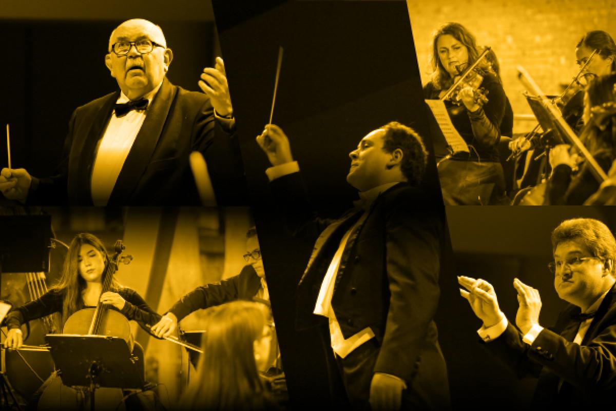 Renginio nuotrauka, TIESIOGIAI INTERNETU | Dėlionė orkestrui VIII: portretai
