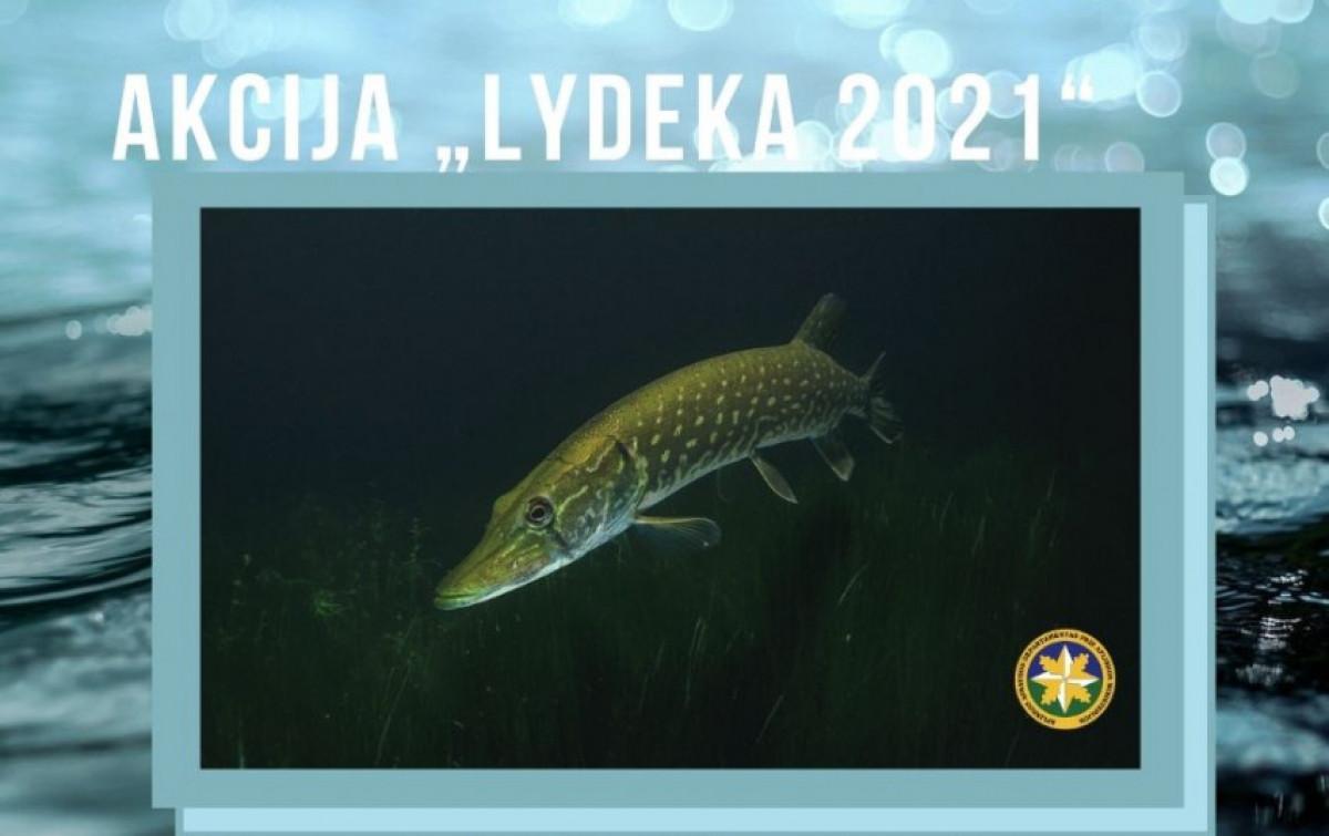 """Akcijos """"Lydeka"""" metu Klaipėdos valdyboje nustatyti 98 pažeidimai, 6 iš jų šiurkštūs"""