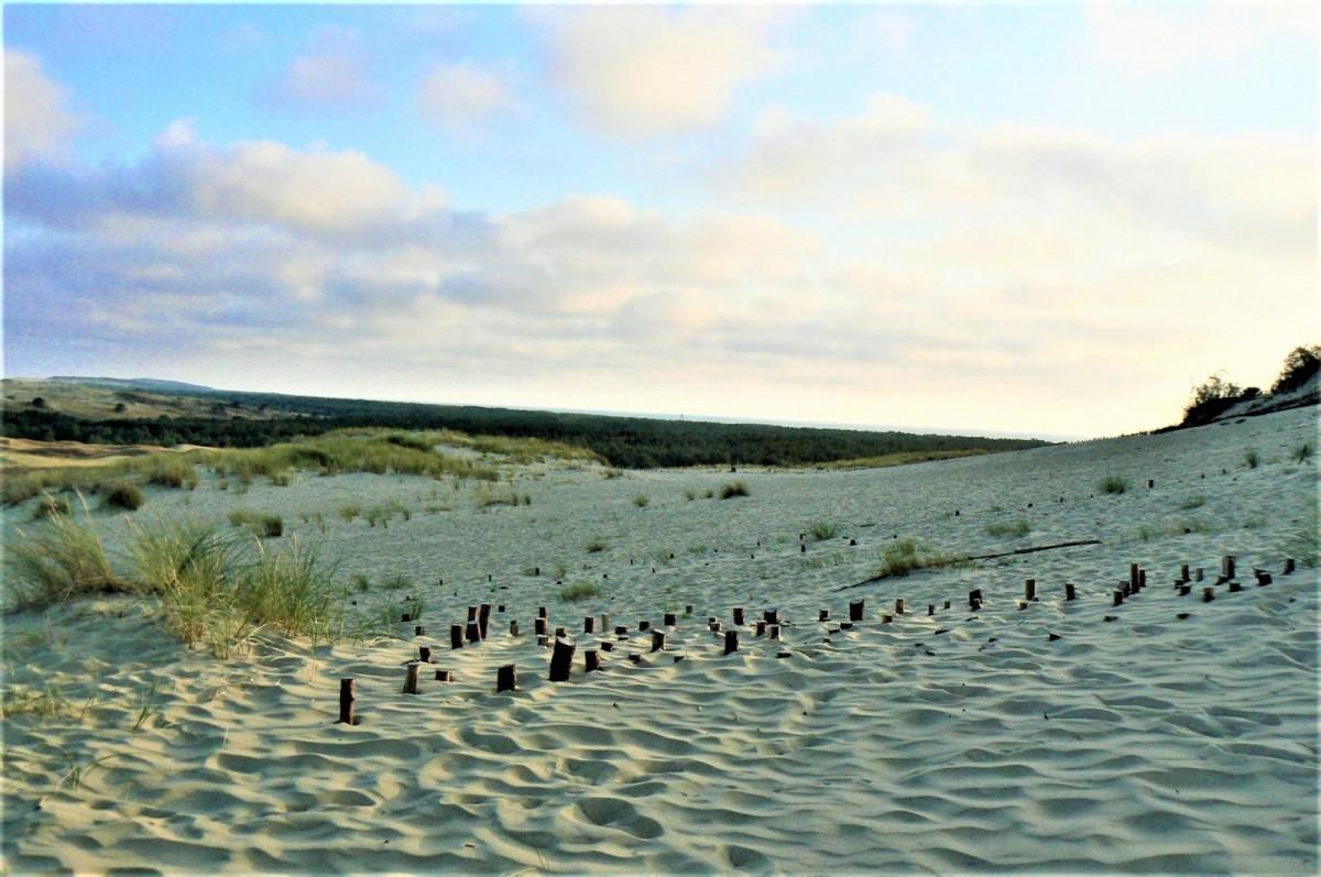 """Į Neringą kviečia akcija """"Darom prie jūros"""": laikas imtis kopų gelbėjimo darbų"""