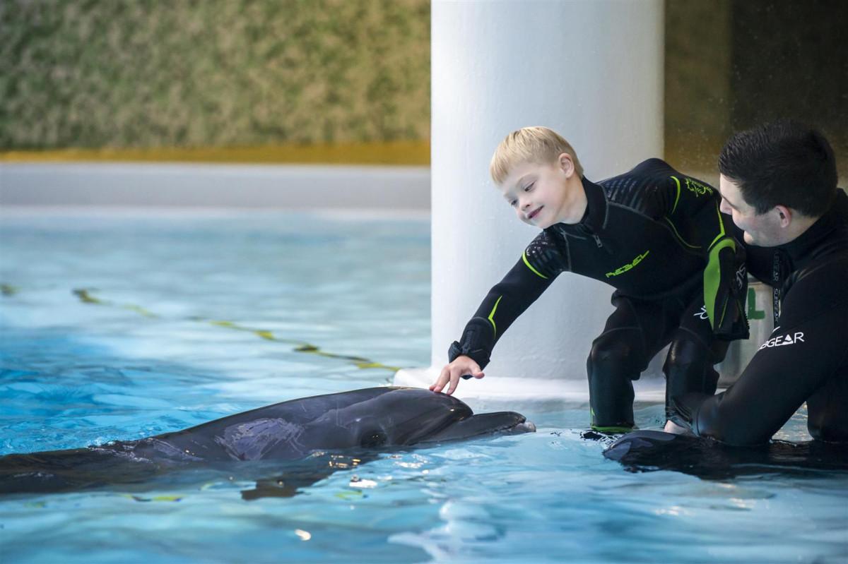 Net penkiolika šeimų gaus nemokamus delfinų terapijos užsiėmimus