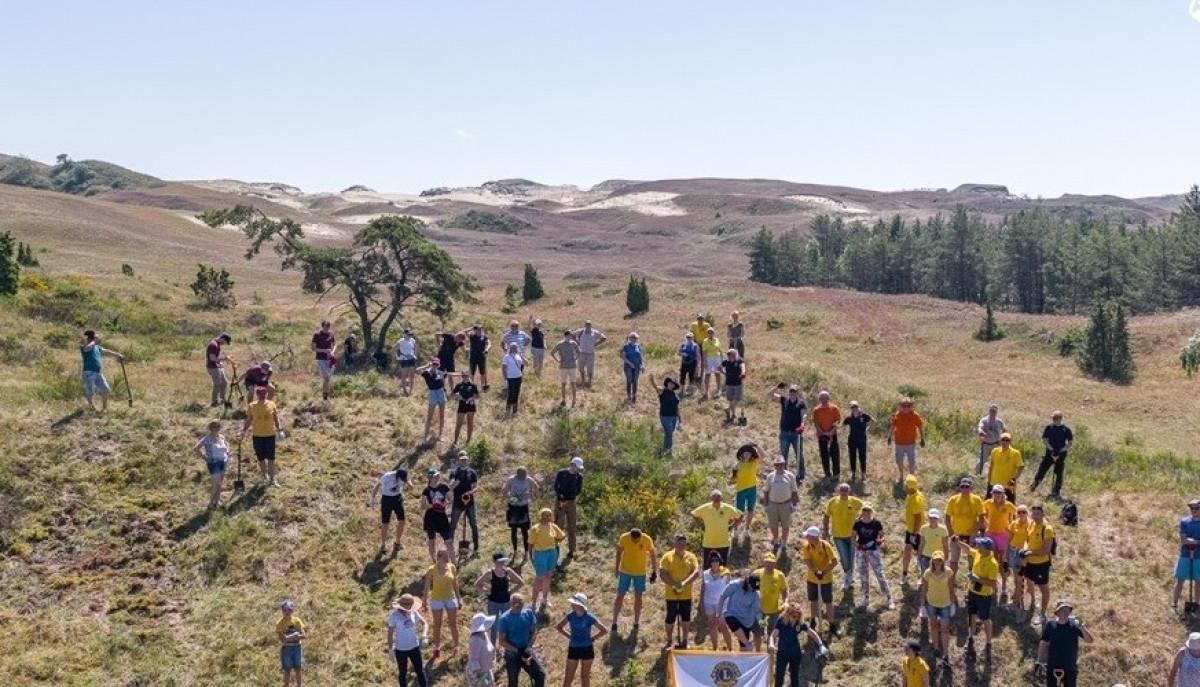 Po masinės talkos Juodkrantė ir Mirusios kopos prašviesėjo - išrovė didelius plotus invazinių augalų